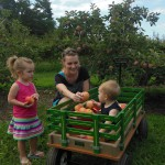 Stepp's Hillcrest Orchard nominated in USA Today's latest 10Best Readers' Choice travel award contest!